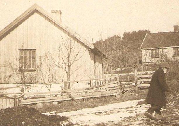 Kroken 1889