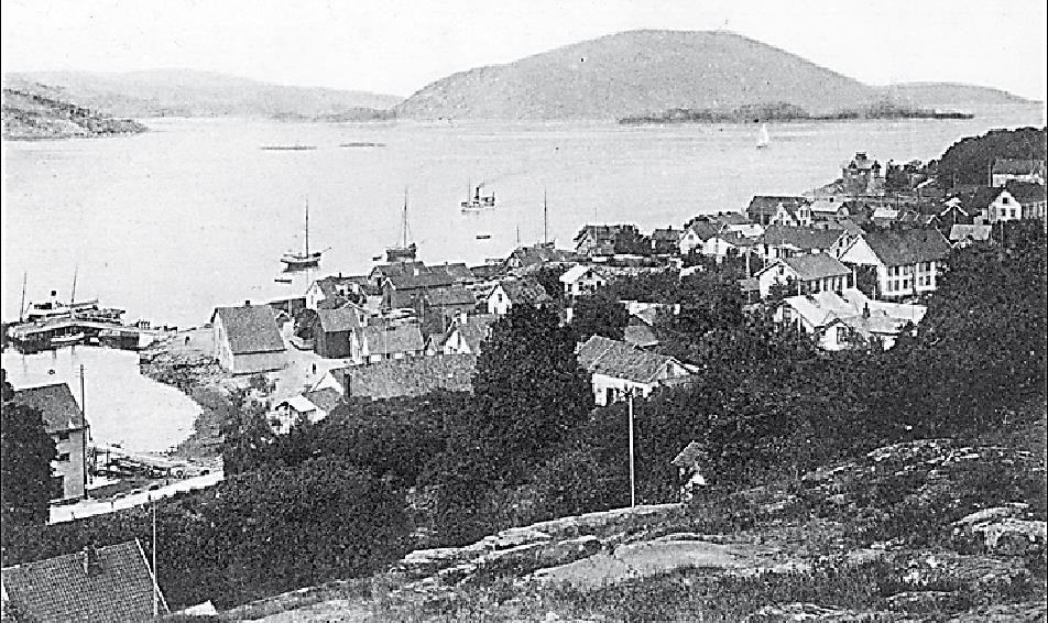Fra Brunskogen ca. 1900