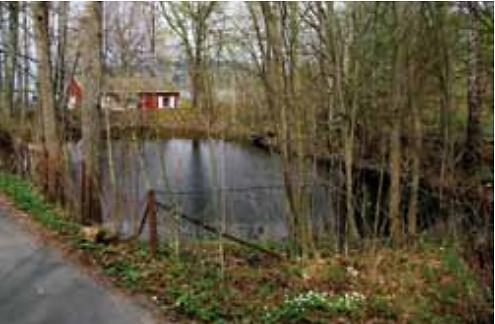 Dammen på Husvik våren 2009. (Foto: Sven Lindblad).